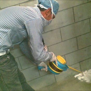 شركة مكافحة الفئران ابو ظبي | شركة الامام | 0565353098